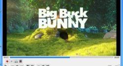 Zoomare un video con VLC