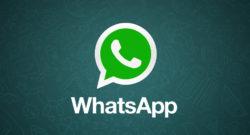 WhatsApp come funziona: Download, Registrazione, WhatsApp Web, Gruppi, Trucchi e Curiosità