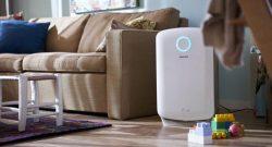 Come pulire il purificatore d'aria: filtri e manutenzione
